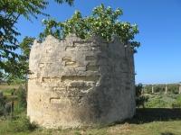 Puglia 2013 543.jpg