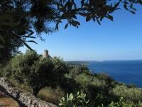 Puglia 2013 562.jpg