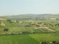 sicilia 2014 682.jpg